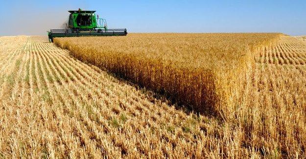 Çiftçiye 581 milyon lira ödeme yapılacak