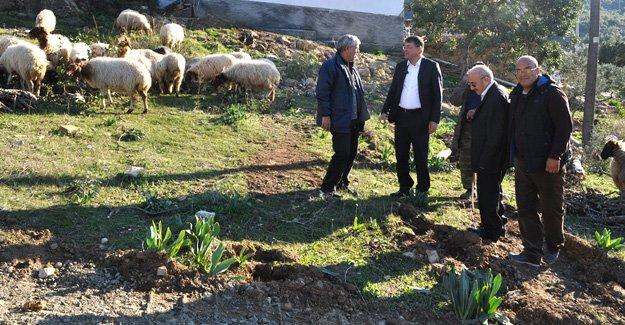 Başkan Turgut, Çalışmaları yerinde inceledi