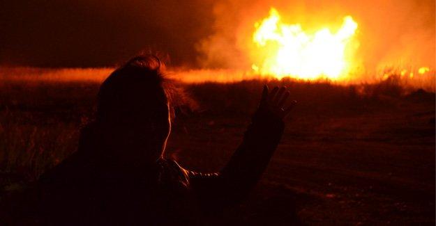 Göksu Deltası cayır cayır yanıyor
