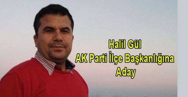 Halil Gül ilçe başkanlığına aday