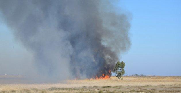 Göksu Deltası'nda yine yangın