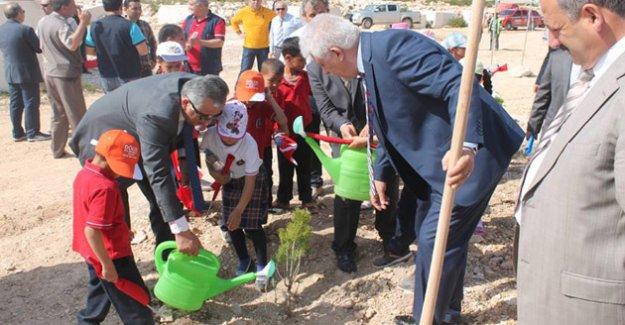 Taşucu'ndaki Mermer Ocaklarına 44 Bin Fidan Dikildi