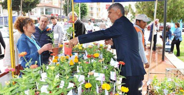Silifke Belediyesi Anneler Gününe Özel 5 Bin Adet Çiçek Dağıttı