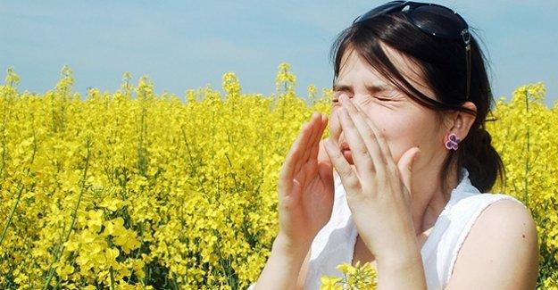 Türkiyede 4 kişiden biri alerjik hastalığa sahip