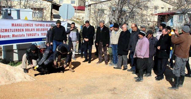 Başkan Turgut, kurban kesilerek karşılandı