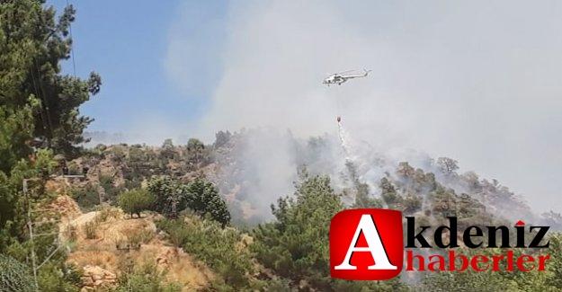Silifke'de çıkan yangında 4 hektar alan zarar gördü
