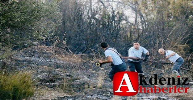 Orman Yangını Büyük Endişe Yarattı
