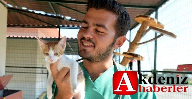 Büyükşehir Veterinerleri Hayvanseverleri Uyardı