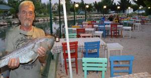 Balık Restaurant Balıkçı Sait sizlerin hizmetinde