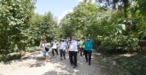 Toroslar Belediyesi'nden Kontrollü Doğa Yürüyüşü