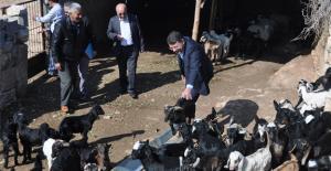 Başkan Turgut, hizmet için geziyor