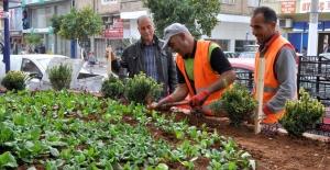 """Turgut, """"Park ve yeşil alanlarımızı çoğaltmaya devam ediyoruz"""""""